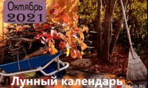 Лунный календарь, гороскоп, октябрь 2021