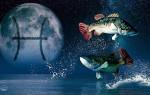 Гороскоп, Луна в знаке Рыбы