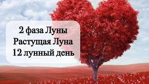 serdce-simvol-12-lunnogo-dnya