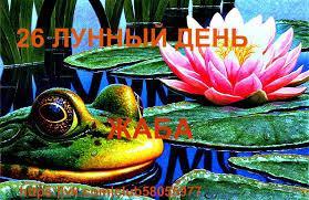Lyagushka, simvol 26 lunnogo dnya