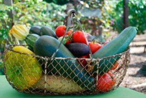 nabor-ovoshchej-i-fruktov