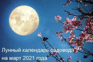 lunnyj-kalendar-sovety-sadovodam