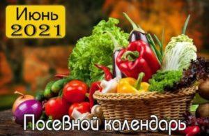 lunnyj-posevnoj-kalendar-iyun-2021